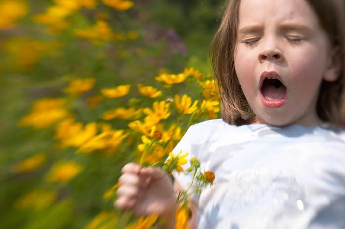 alergia-polen-ninos_0